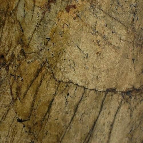 Granite Autumn leaf